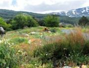 jardin hoyadepedraza108-2